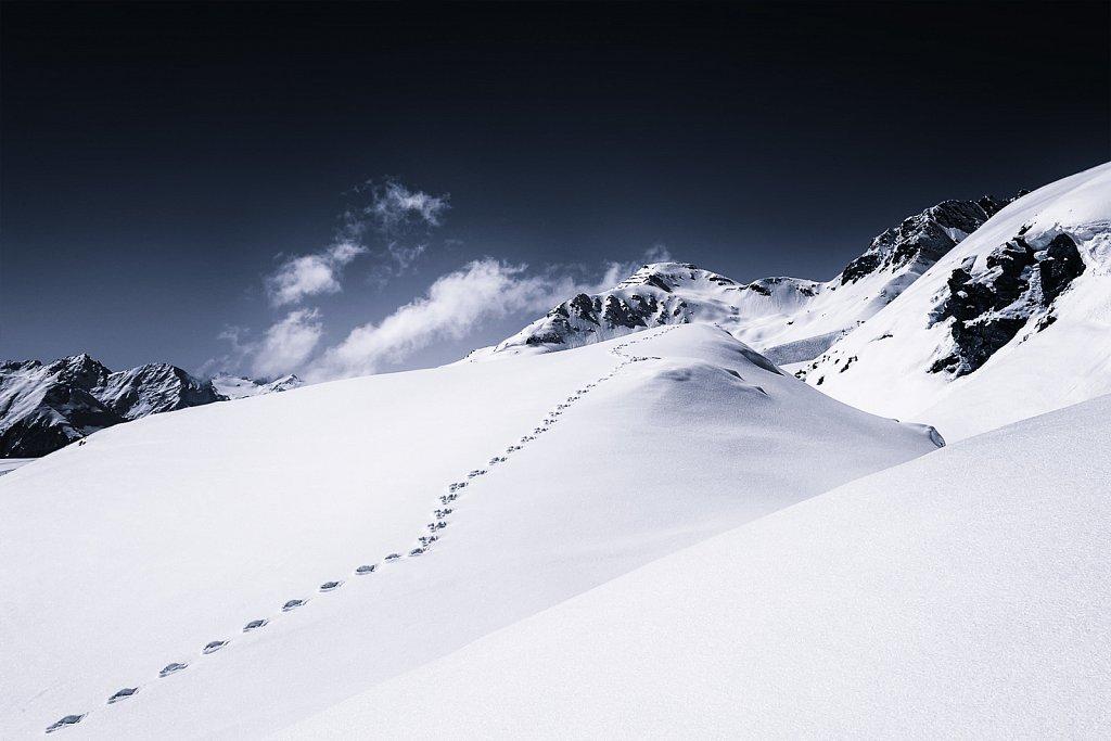 Der lange Weg